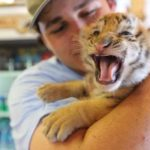 zoo worker holding a tiger cub